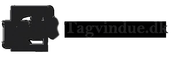 Tagvindue.dk Logo